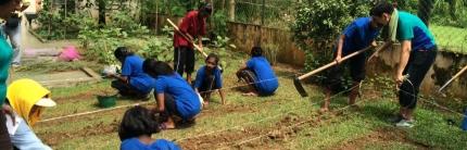 Organic Farming at Kuala Kubu Baru