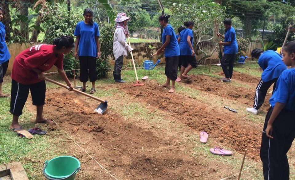 soroptimist-bangsar-malaysia-women-2016-Aug-Organic-Farming-Kuala-Kubu-Baru-11x